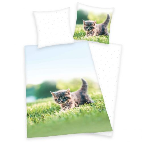 Produktbild Bettwäsche Kätzchen Katzenbaby weiß grün braun Bettwäsche Vorderseite Rückseite