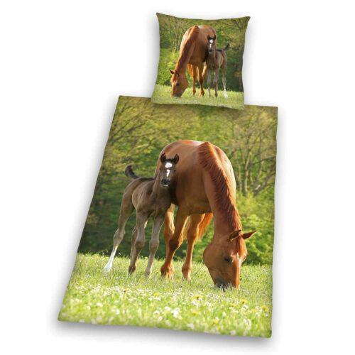 Produktbild Bettwäsche Pferd mit Fohlen grün braun Bettwäsche Vorderseite Rückseite